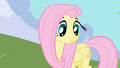 Fluttershy stares at ground before mumbling name S1E01.png