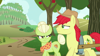 Granny Smith forbids Bright Mac's relationship S7E13