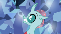 Ocellus hears Thorax coming S9E3