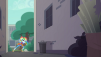 Rainbow Dash at the museum back alleys EGDS11
