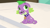 Spike mentions Twilight's -pesky wings- EG