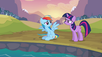 Twilight telling Rainbow Dash to quit S2E22
