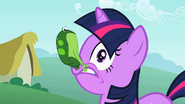 Twilight with a frog S1E15