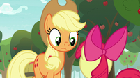 Applejack looking down at Apple Bloom S9E10