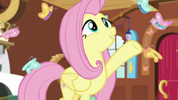 """Fluttershy """"come and go as they please"""" S7E5"""