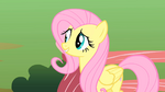Fluttershy 'Of course' S1E17