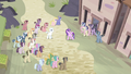 Ponies gathering around S5E02.png