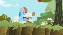 Rainbow Dash 'Right, Applejack-' S2E3