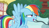 Rainbow Dash -nope, not at all!- S8E20