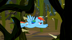 Rainbow Dash flying 6 S2E07