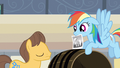 Rainbow Dash trying to find Applejack S2E14.png