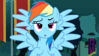 Rainbow Dash with four wings S3E5