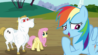 Rainbow correcting herself S4E10