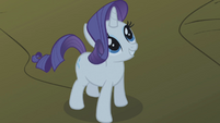 Rarity looking up smiling S1E2
