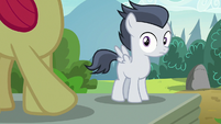 Rumble notices Apple Bloom looking at him S7E21