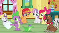 Spike, the CMC and the pets S3E11.png