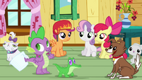 Spike, the CMC and the pets S3E11