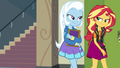 Sunset and Trixie walking together EGFF.png