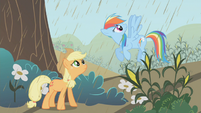 640px-Applejack and Rainbow Dash conversing about the rain S2E1