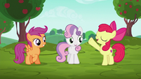 "Apple Bloom ""CMCs behind the wheels!"" S6E14"