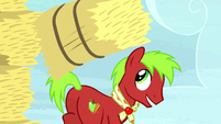 Apple Cinnamon tosses a hay bale to Applejack S5E6