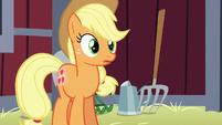 Applejack listens to Apple Bloom's worry-talk S5E17
