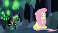 Discord finds Fluttershy S6E26.png