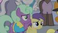 Earth pony mare covers Princess Erroria's ears S4E24.png
