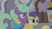 Earth pony mare covers Princess Erroria's ears S4E24
