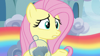 "Fluttershy ""since before you were born"" S6E11"