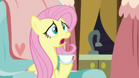 Fluttershy -what's going on-- S7E12