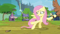 Fluttershy tries to retrieve bear call S4E22