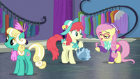 Hipster Fluttershy talking to Mare E. Belle S8E4