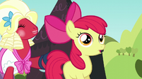 Orchard Blossom pushes Apple Bloom toward the stage S5E17