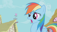 "Rainbow Dash ""ON the other end"" S01E04"