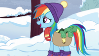 "Rainbow Dash ""say goodbye to Tank"" S5E5"