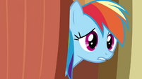 Rainbow Dash -hey guys- S03E13