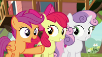"Scootaloo ""we know all about friendship!"" S8E12"