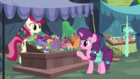 Sugar Belle buying flowers from Rose S9E23