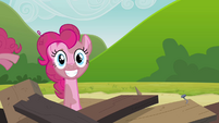 Another Pinkie clone coming out of the tower remains S3E3