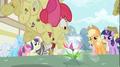 Apple Bloom pounces S02E06.png