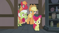 Apple family in varied confusion S5E20.png