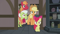Apple family in varied confusion S5E20