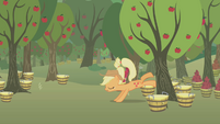 Applejack misses another tree S1E04