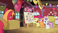 Cutie Mark Crusaders happy to see Big Mac S8E10.png