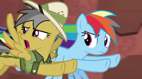 Daring Do --are you crazy-!-- S6E13