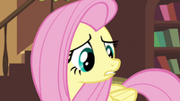 """Fluttershy """"you may never make it back"""" S4E16.png"""
