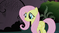 Fluttershy after defeating the Cockatrice S1E17.png