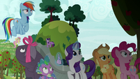 Mane Six and tortoise look up at the sky S9E13