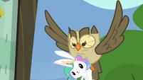 Owlowiscious carries Angel S4E21
